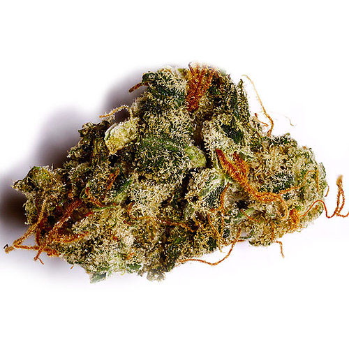Buy Northern Lights Strains