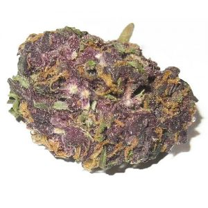 GrandDaddyPurple kush for sale