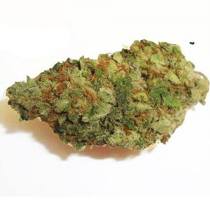 Buy Blueberry Weed Online