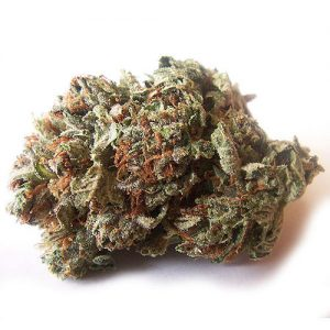 Buy White Widow Strain